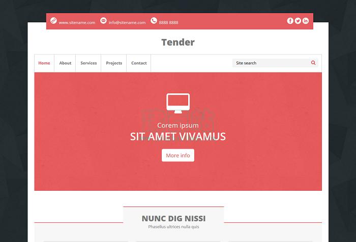 一套响应式产品介绍的通用网站模板界面